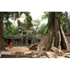 Angkor Ruins with Monk