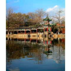Pagoda in Green Lake Park