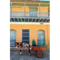 Horse Cart in Trinidad