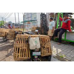 Poultry Vendors