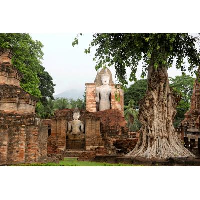 Buddhas 3